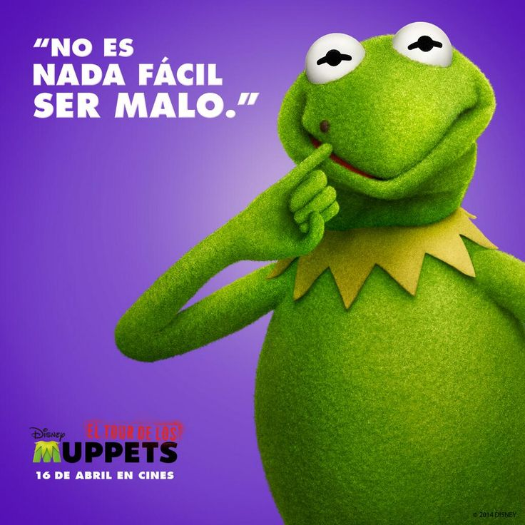 Muppet Quotes Muppetquotes: 24 Best The Muppet Quotes And Sayings Images On Pinterest