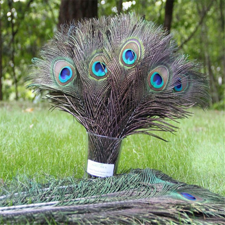 HOT 10pcs Natural Peacock Feather 25-30cm Clothing Decoration Plumage Fashion Crafts Beautiful Home Wedding Decorative E752