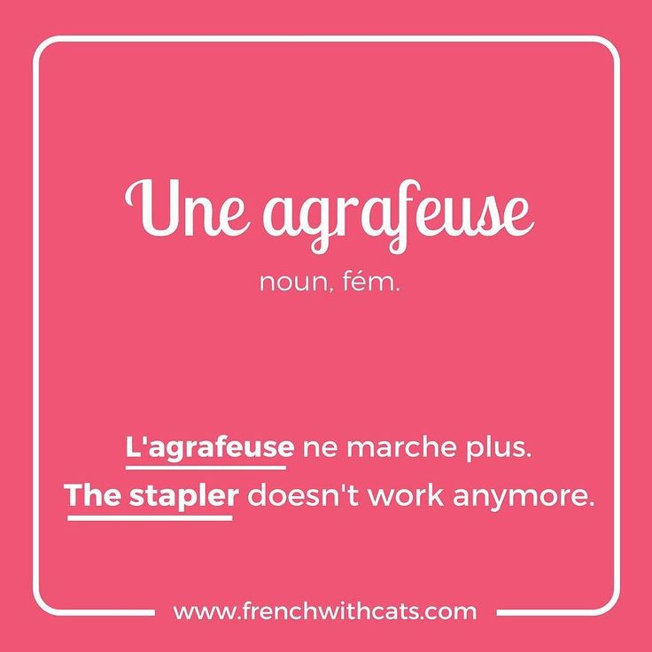 #LearnFrench in a fun way with our #French #WordOfTheDay. Today's word: une agrafeuse=a stapler