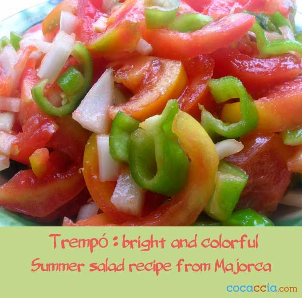 Trempó is a popular summer salad that is very popular in the island of Majorca. Very simple salad recipe, delicious and refreshing #foodporn #salads #recipes