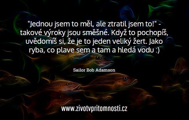 http://www.zivotvpritomnosti.cz/clanky/inteligence-ciste-energie-sailor-bob/
