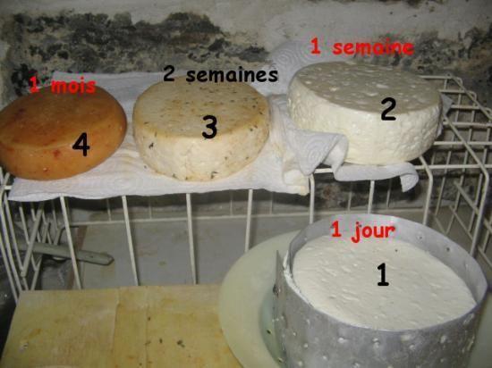 Faire son fromage à la maison