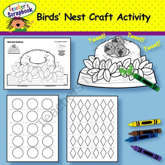 Teaching Your Children About Birds | Learn About Birds