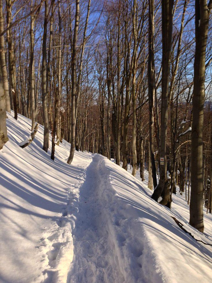 Winter | Bieszczady