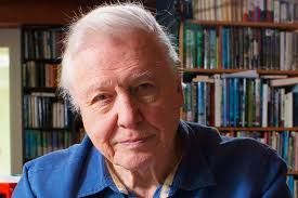 Image result for sir david attenborough wife
