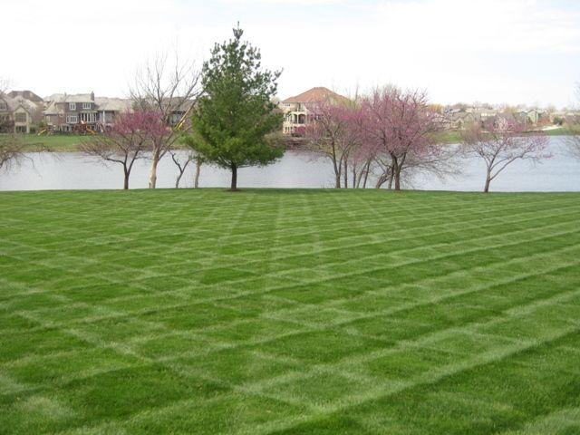 28 best lawn patterns images on pinterest lawn care lawn maintenance and landscape designs. Black Bedroom Furniture Sets. Home Design Ideas