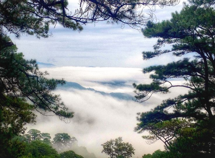 Nice view at Baguio, Philippines