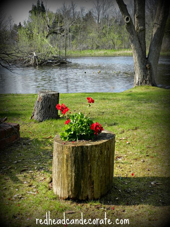 Easy Stump Planter; I did these when we lived out in the woods and had to cut dead trees down! Such a pretty idea.