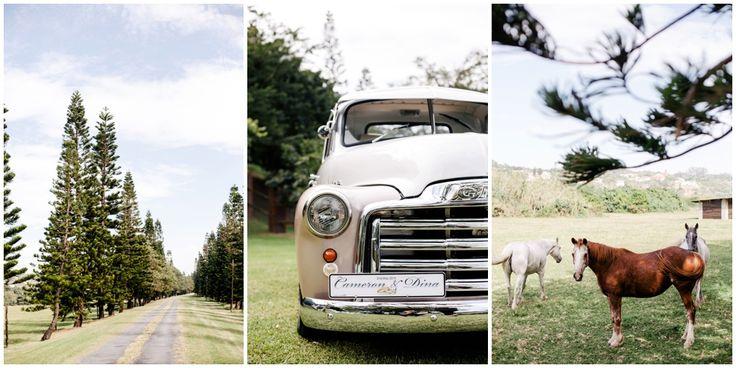 www.vanillaphotography.co.za | Durban wedding photographer, Durban wedding venue, The Venue wedding venue, south coast, farm wedding, vintage car, horses