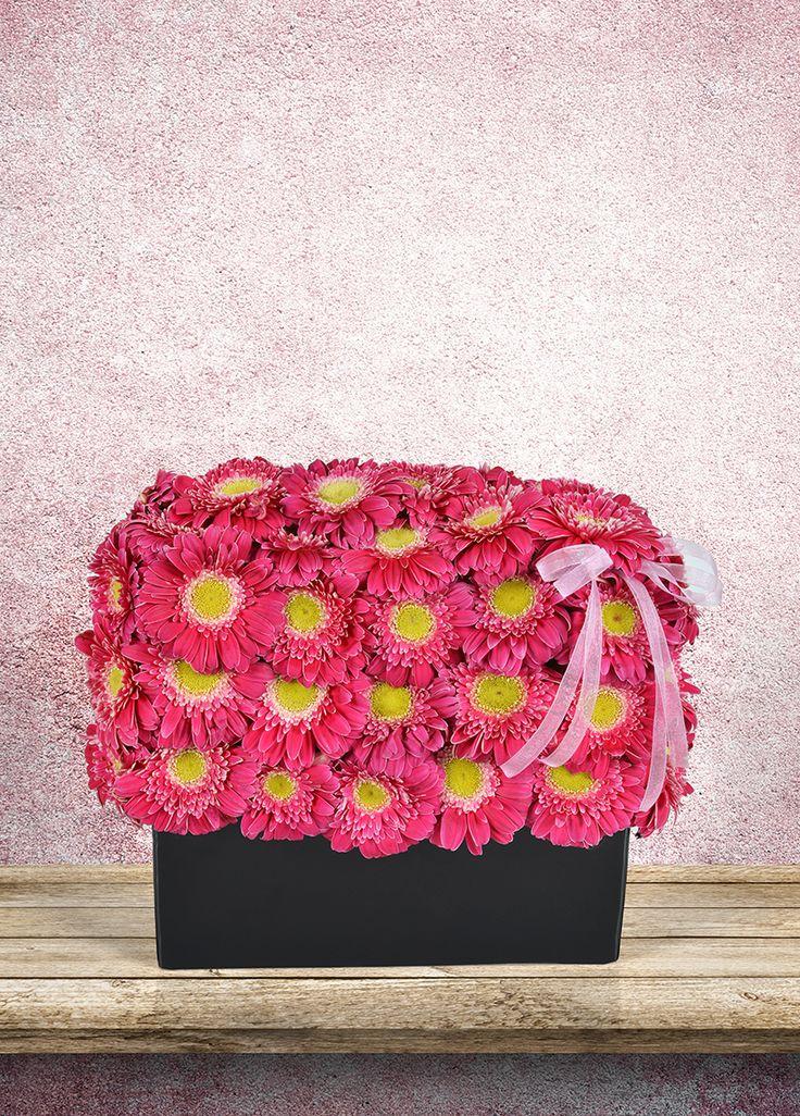 www.escicek.com ailesi sizler için hazırlanıyor. Renklerin karnavalı olan birbirinden güzel aranjmanlarımızla sevdiklerinizin hayatına renk katacaksınız!