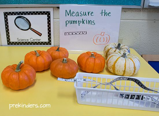 Mini pumpkins make great tools for science and math exploration in the Pre-K classroom. We used mini pumpkins for exploring weight, measurement, and estimation. These activities can be added to your Science Center or Math Center as a learning display. Children love anything mini, and I like to include real pumpkins for children to explore …