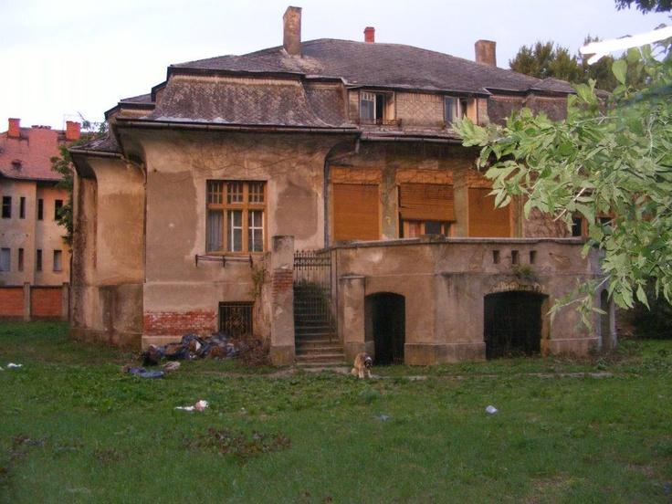 """Casa Mühle, casa renumitilor gradinati Wilhelm si Arpad Mühle, datorita carora Timisoara a fost denumita """"orasul Florilor"""""""