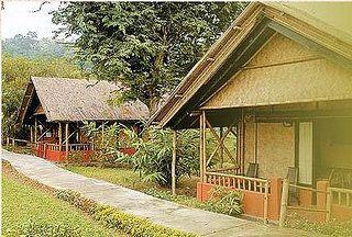 Jupuri Ghar - Kaziranga - Assam