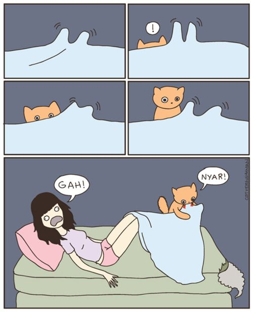 Haha! One main reason my cat does not sleep with us - that, and kneading our faces.