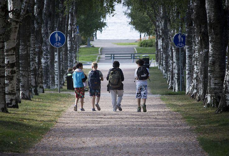 Walking   by visitsouthcoastfinland #visitsouthcoastfinland #Finland #Lohja #lohjansaari #walking #trees #kävelyllä #puita