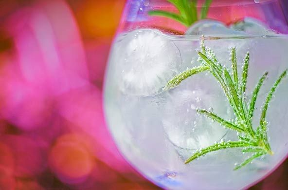 Gin & Tonic Hoteles Servigroup