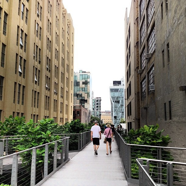 High Line Park at 23rd StreetJuly 13, High Line, Chelsea Gallery, Gallery Visit, 23Rd Street