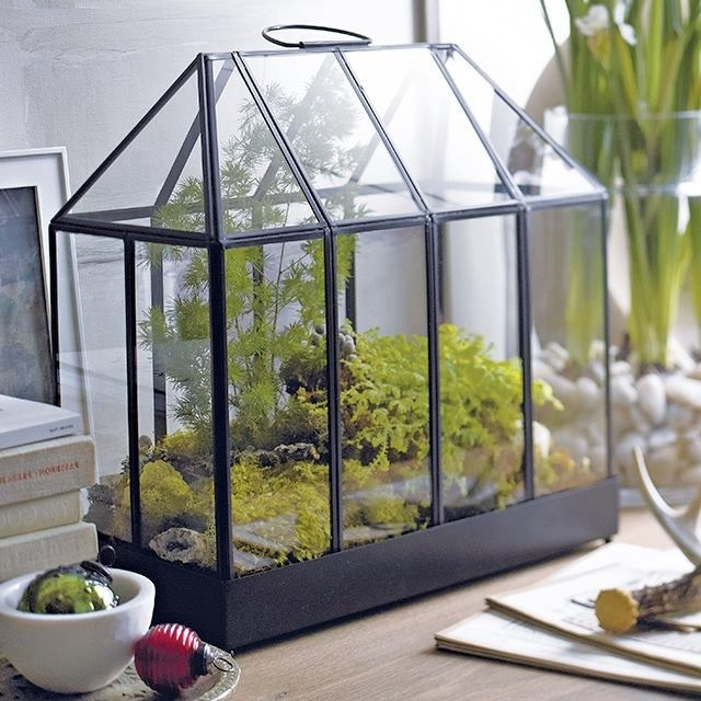 Crate And Barrel Mini Greenhouse Products I Love