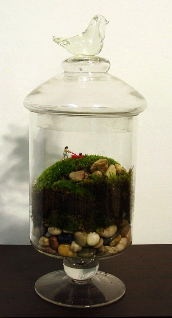 Terrariums with a humorous twist from Twig Terrariums