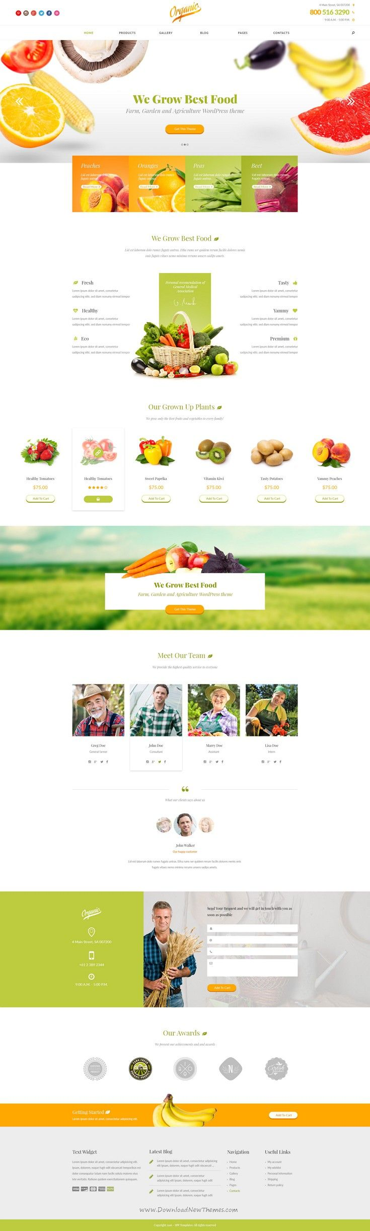 Organic is a bright and eye catching design for agriculture topic. This #PSD theme can be used for small farm #website, #organic food store or market.