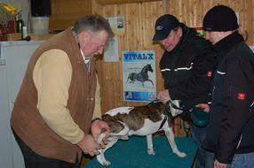 Am Kummertag für Tiere behandelt Tamme Hanken morgens Pferde und nachmittags Hunde. Diese Hundehalter kamen extra aus Be © Jean-Charles Fays