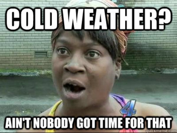 Funny Pictures And Memes Funny Meme Fun Laugh Weather Memes