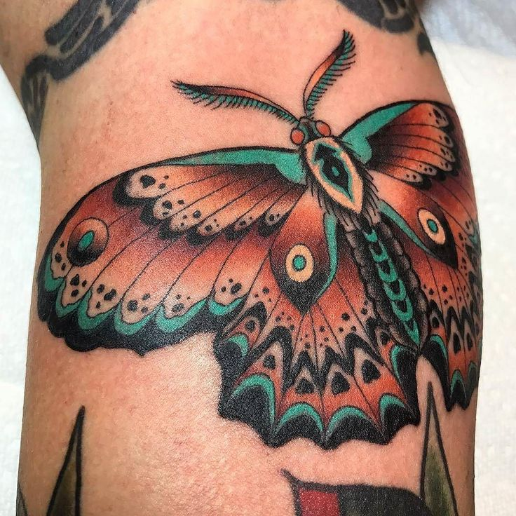 Moth tattoo by @clintonleetattoos at @inkanddaggertattoo in Atlanta GA #clintonleetattoos #clintonlee #inkanddaggertattoo #inkanddagger #atlanta #roswell #georgia #mothtattoo #tattoo #tattoos #tattoosnob