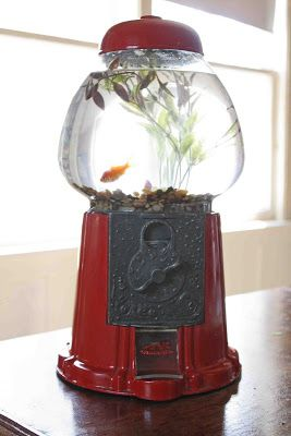 =*Superwoman*=: Turn a Gumball Machine into a Fishbowl