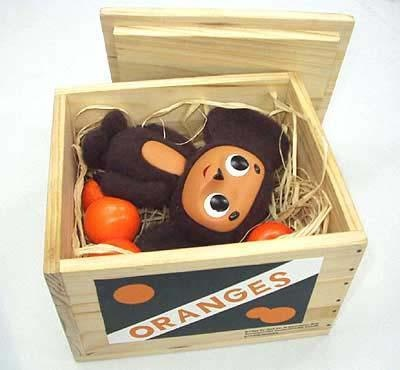 Cheburashka in his orange crate!