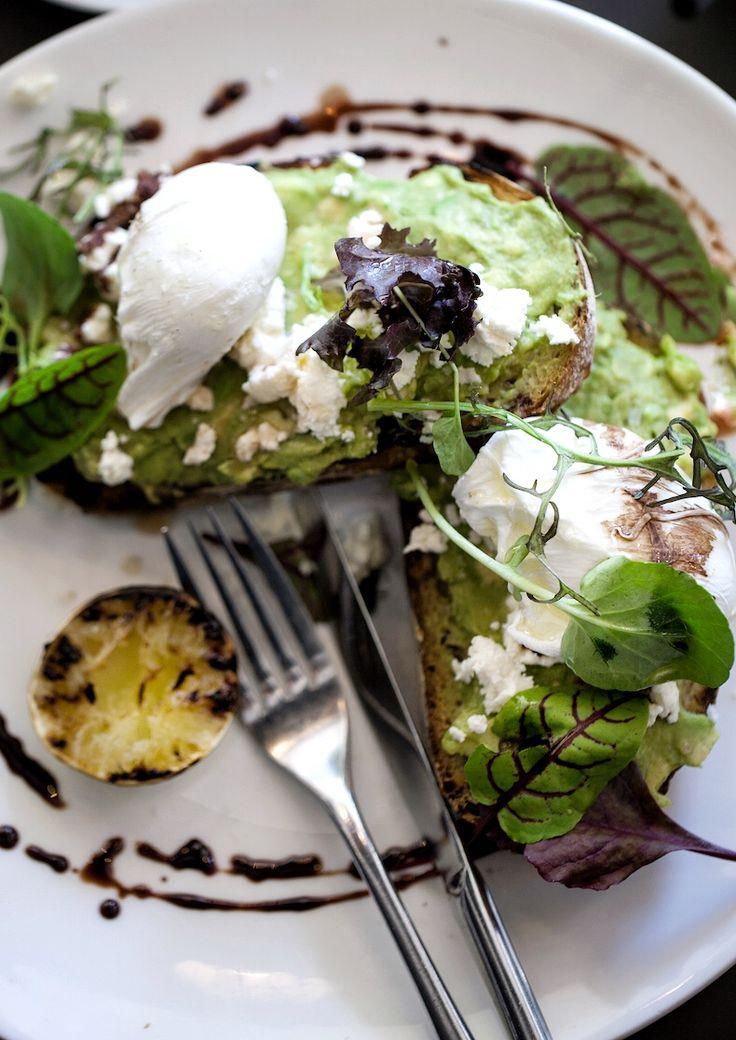 avocado morgenmad