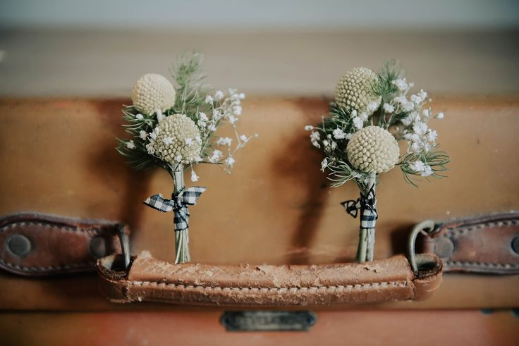 Craspedia balls and gingham ribbon make great buttonholes! Photography by Nicola Kirk