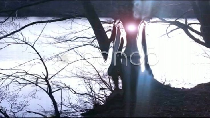 Invisible Female moving in Forest - Unsichtbare Frau bewegend im Walt HD - Stock Footage | by TheLightworkers here: http://www.pond5.com/de/stock-footage/35089713/unsichtbare-frau-bewegt-sich-wald-hd.html