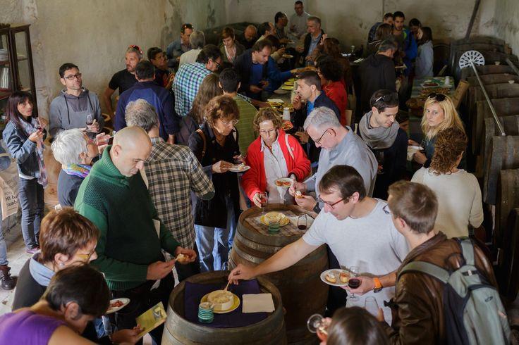 Cata final de vino ecológico de Celler Can Torres y productos de la tierra con clientes de Triodos Bank.