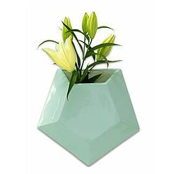 Mint Pentagon Wall Planter Large