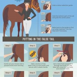 Do you know how easy it is to put false tail to make your horse more presentable?