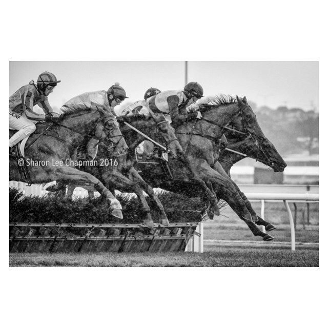 Day One of the famous Warrnambool Carnival and the skies opened up #horseracing #jumpsracing #warrnamboolracingclub #horses by fasttrackphoto