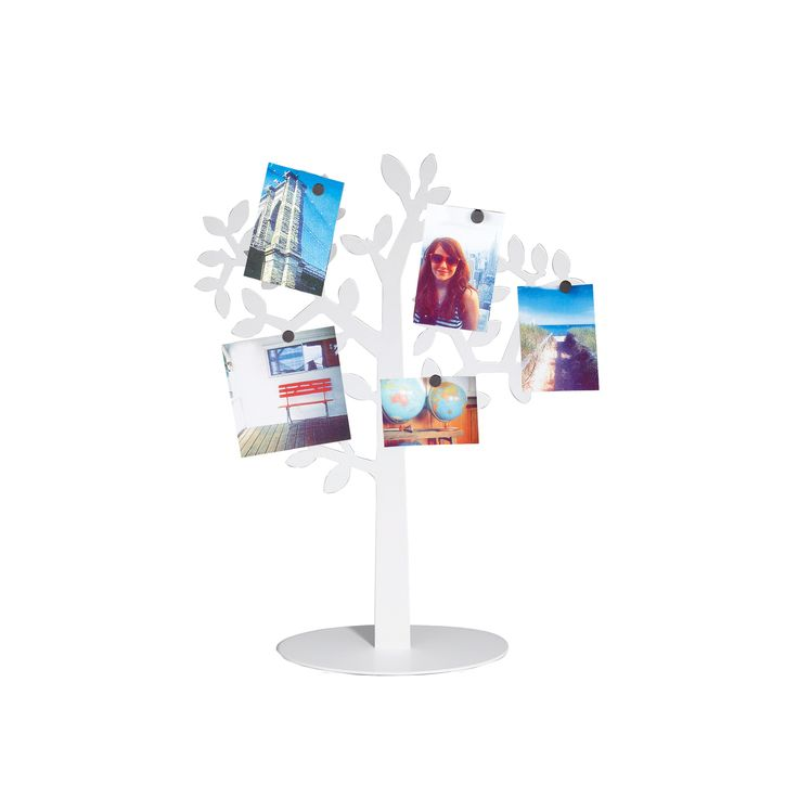 laurel mini photo display white