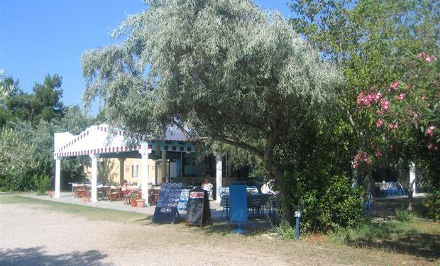 Camping Daedalos ligt aan de westkust van het prachtige eiland Thasssos. Het is een smalle camping zodat bijna alle staanplaatsen (gedeeltelijk) zeezicht hebben. Direct voor de deur is er een zandstrand met gedeeltelijk een brede ligweide. Aan deze ligweide staat modern speeltuig voor de kleintjes. Een deel van de camping is omheind met hoge struiken. De meeste schaduwplaatsen zijn bedoeld voor tenten zodat de caravans en campers grotendeels in de zon staan.
