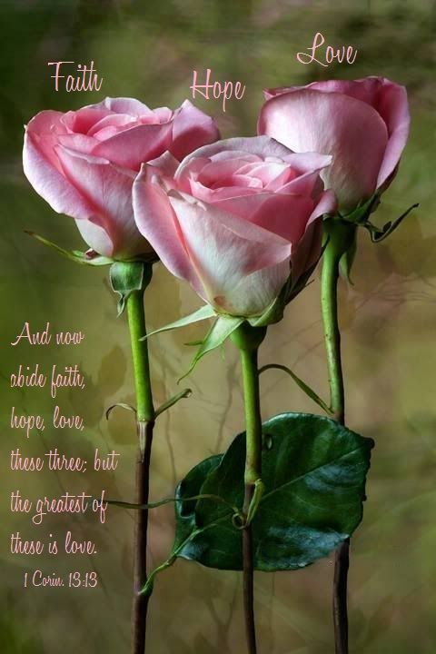 1 Corinthians 13:13 (NASB) - But now faith, hope, love, abide these three; but the greatest of these is love.