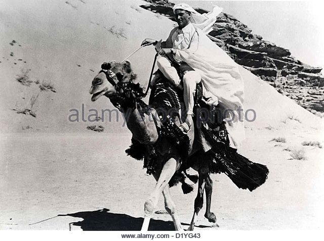 Lawrence Von Arabien Lawrence Of Arabia Peter O'Toole *** Local Caption *** 1962 -- - Stock Image