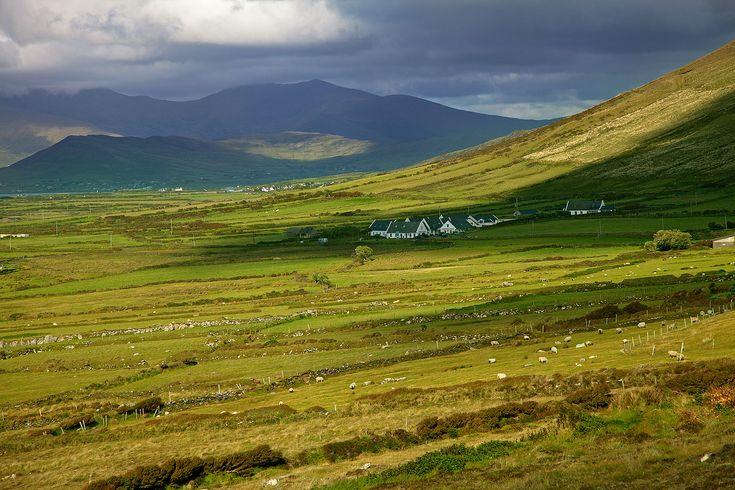 Dingle - Ireland...