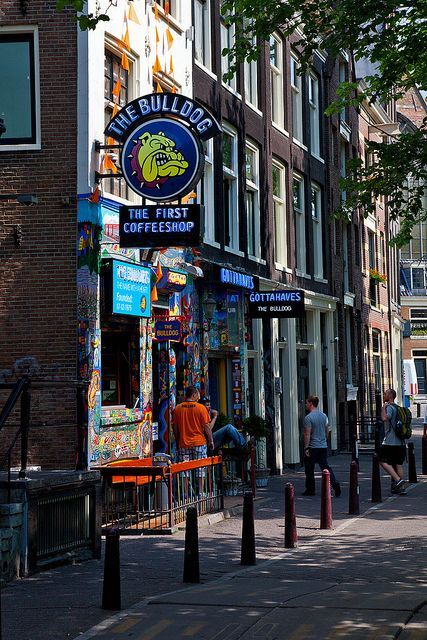 The Bulldog Coffee Shop, Amsterdam
