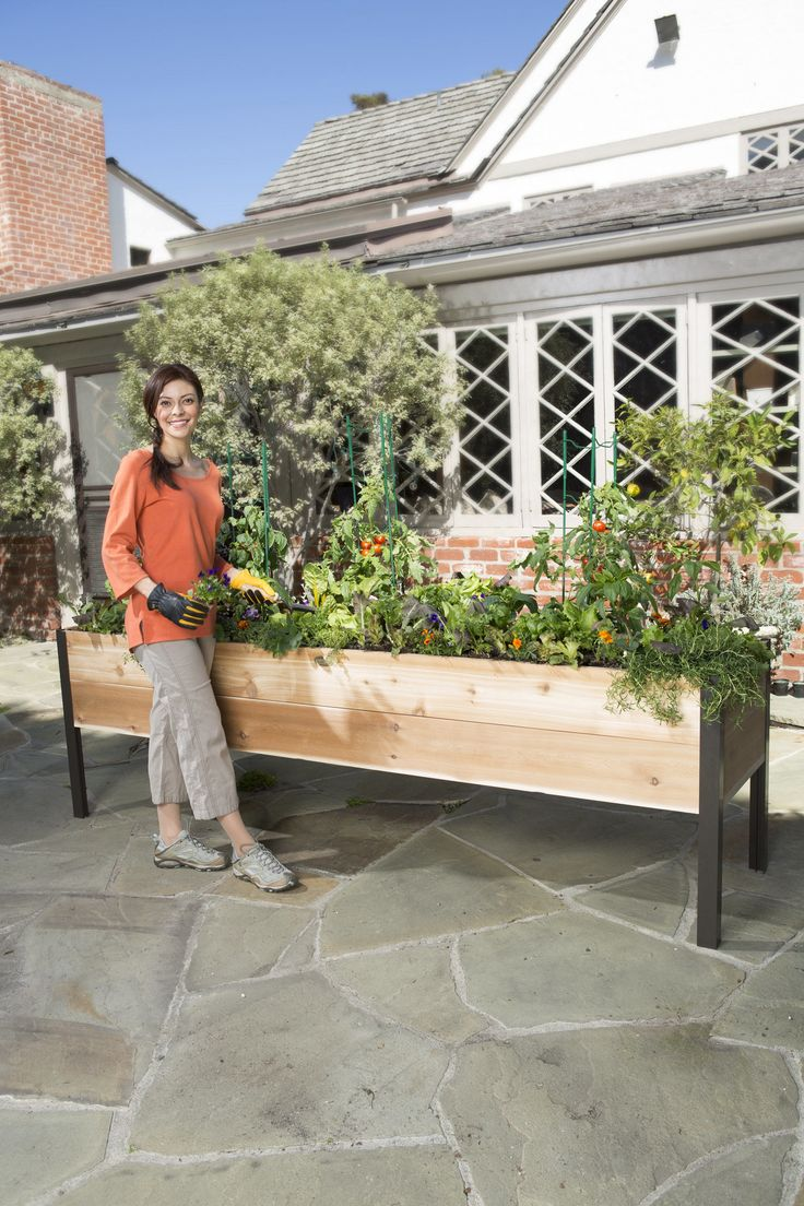 17 Best Images About Vegetable Garden Enclosures On 400 x 300