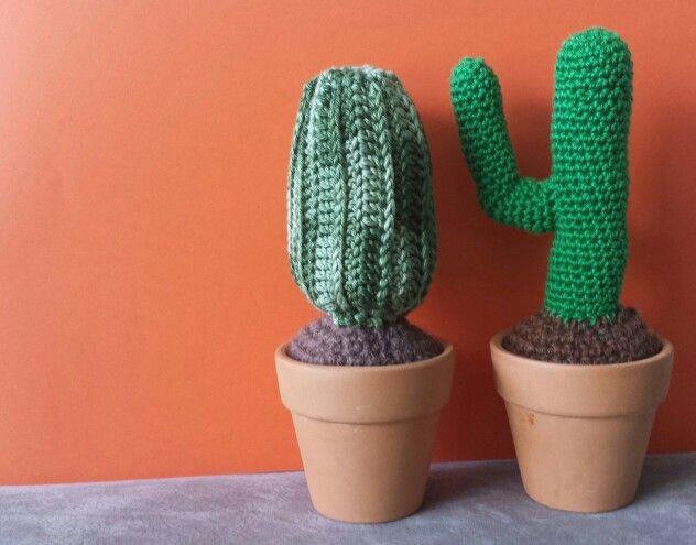 My first crochet cactus :)