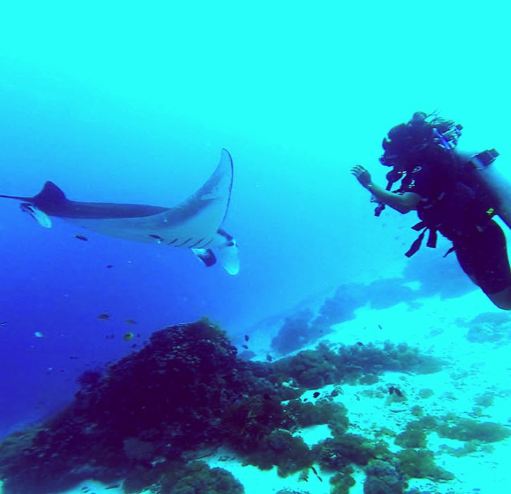 Scuba diving opens up a whole new world of adventure and exploration. If you're considering learning to dive, here are some of my best scuba diving tips for beginners.