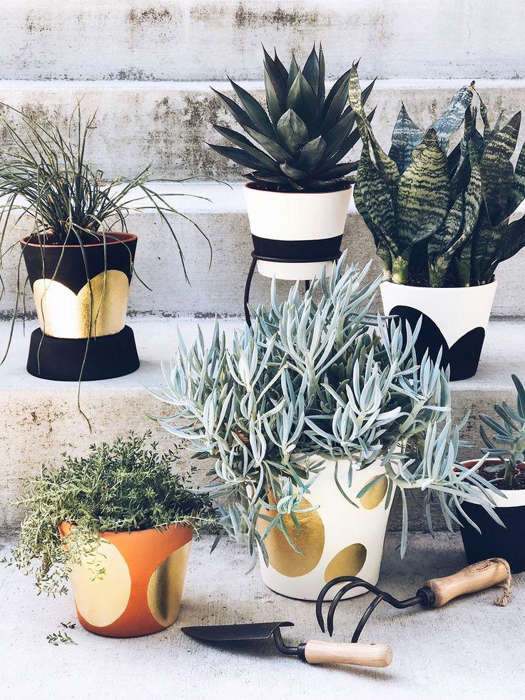 DIY Gold Leaf Planters