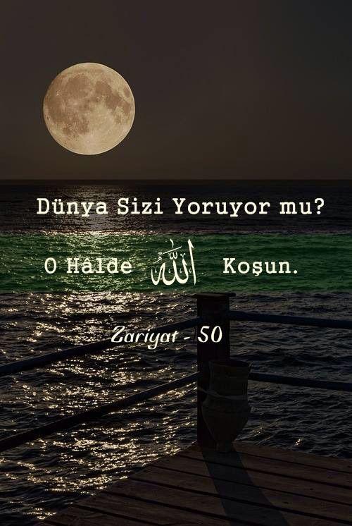 #jannah #islamicquotes #prayer #sunnah #allahhuakbar #islam #alhamdulillah #subhanallah #paradise #tasavvuf #günaydın #islamic #tefekkür #selam #muhammed #istanbul #dua #peygamber #müslim #ibadet #muslima #muslim #quran #allah