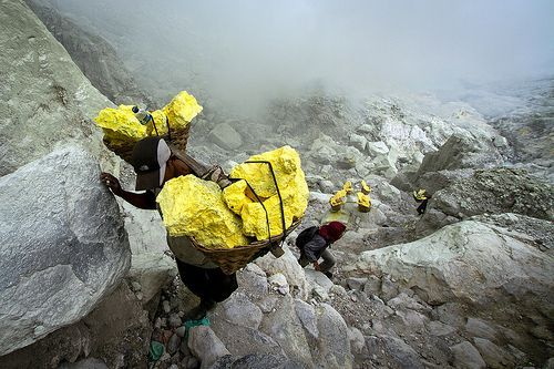 Java. Sulphur Workers climbing up the Ijen caldera.: