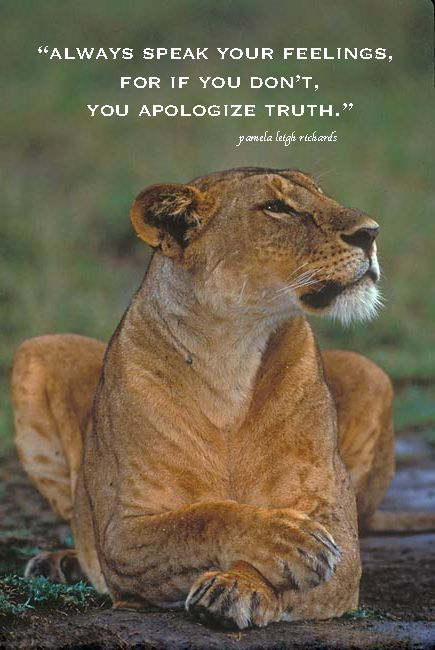 quotes lioness - Google Search