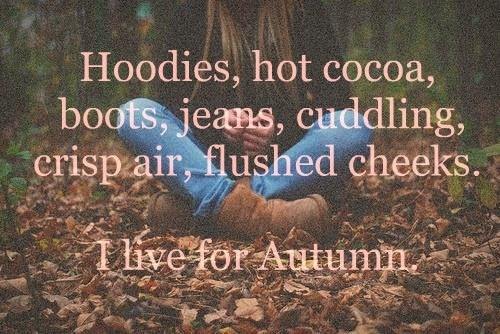 Hoodies, Hot Cocoa, Boots, Jeans, Cuddling, Crisp Air, Flushed Cheeks, AND Football.